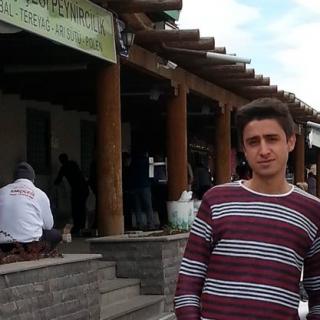 Mehmet  Güneş