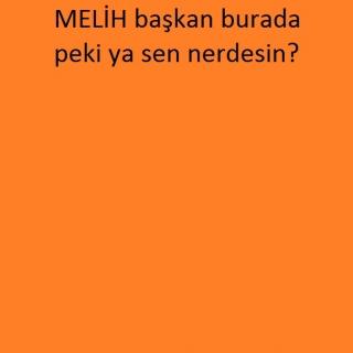İbrahim Melih  Gökçek profile picture